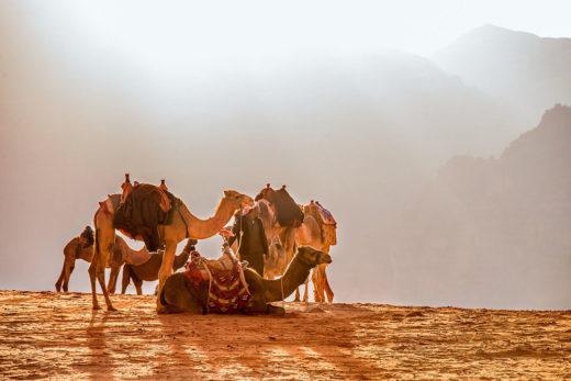 Ferie zimowe w Jordanii pustynia