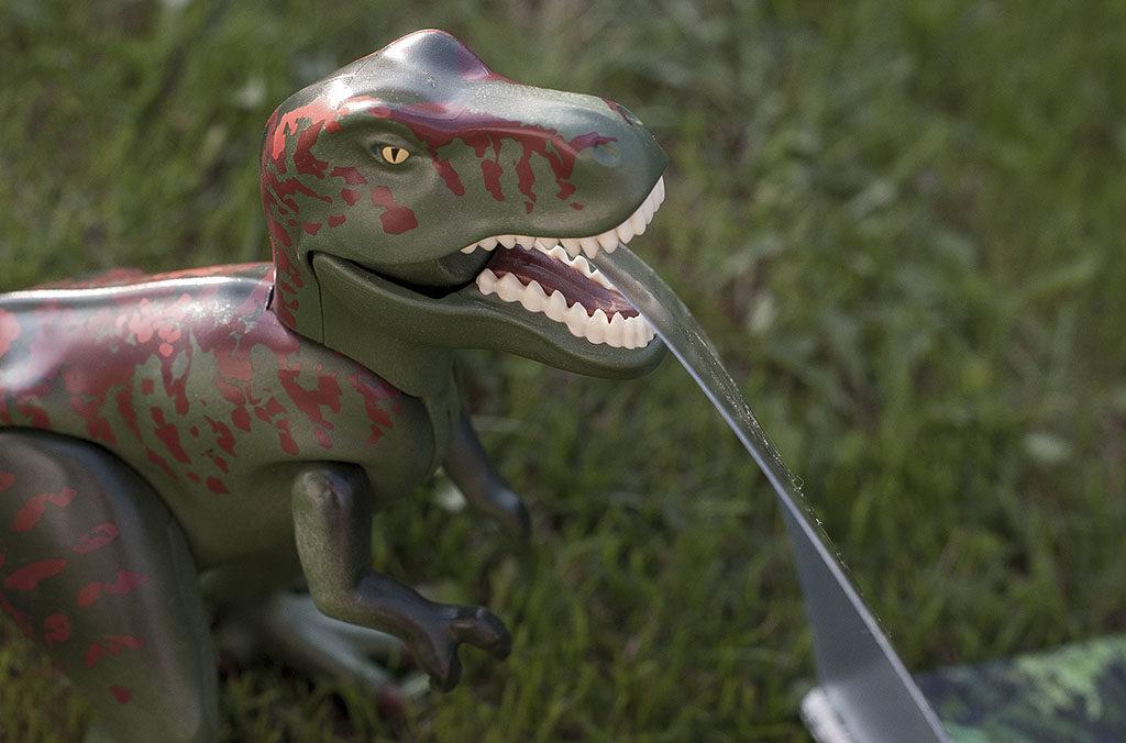 Fotoksiążka Saal z dinozaurem