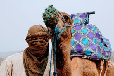 pustynia w maroku maroko w czerwcu