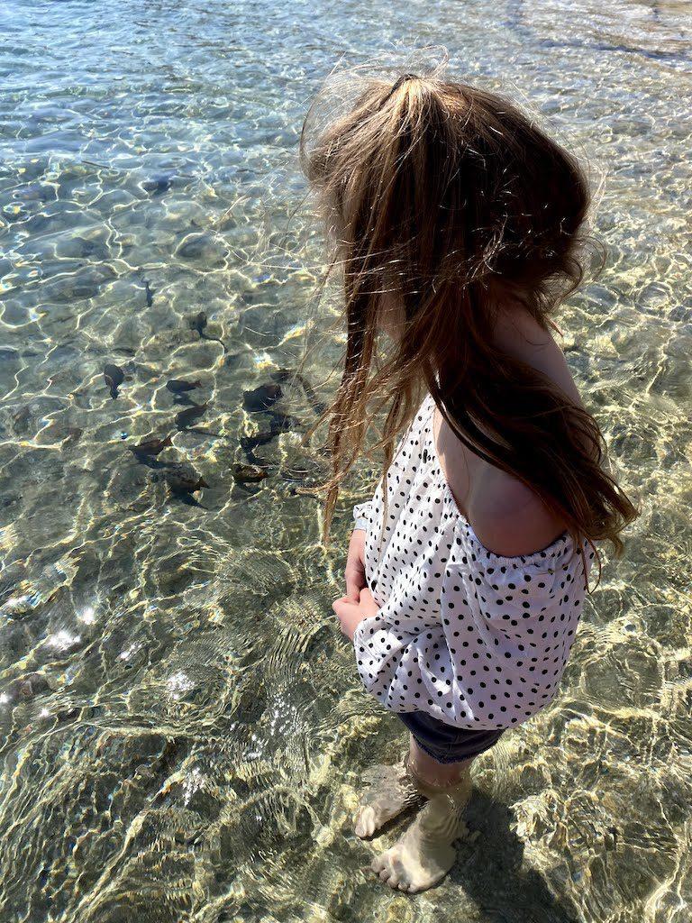 Ejlat zatoka Coral Beach